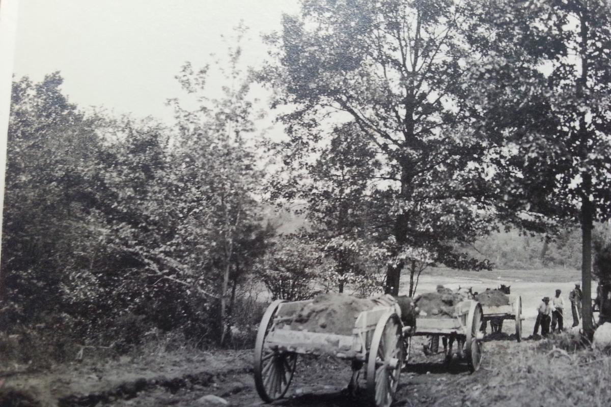Horses used to bring in fill for the filter beds